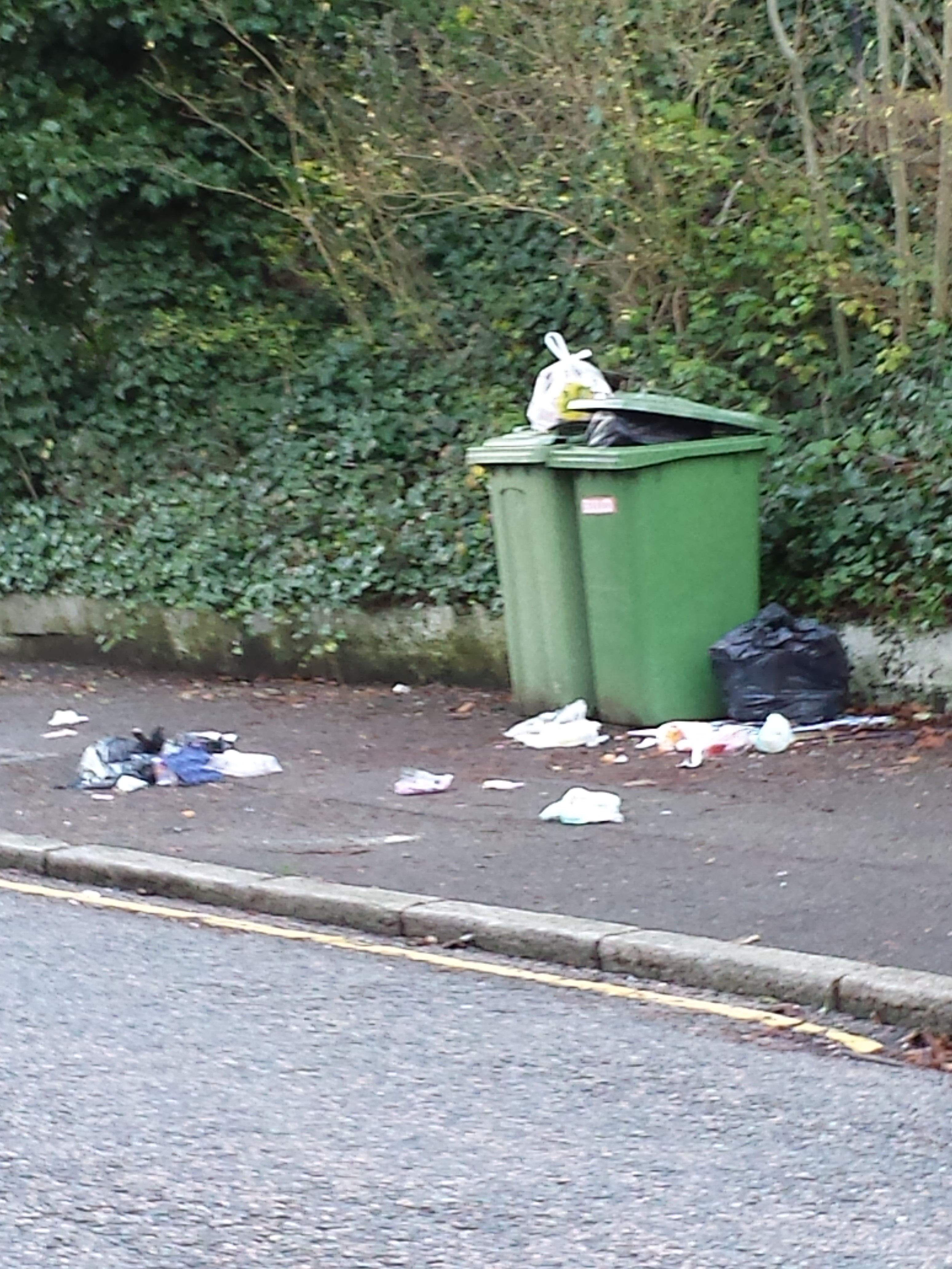 Rubbish refuse recycling and fly tipping in croydon 12 feb 2014 ccc - Rd rubbish bin ...